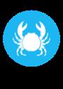 Imagen que contiene rueda  Descripción generada automáticamente