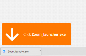 Google Chrome Zoom Install