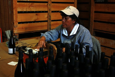 Woman labeling bottles of wine at a Maipo Valley winery near Santiago Chile