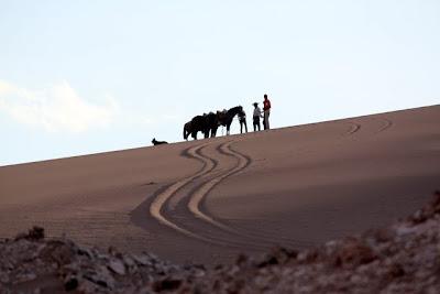 Atacama Desert horseback riding