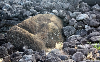 Easter Island moai in the ground