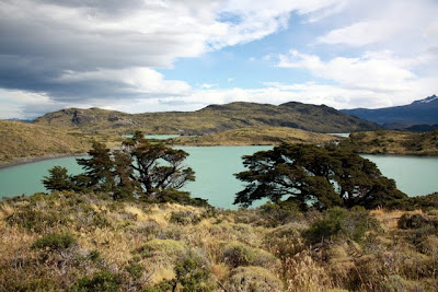 Lake in Torres del Paine National Park in Patagonia