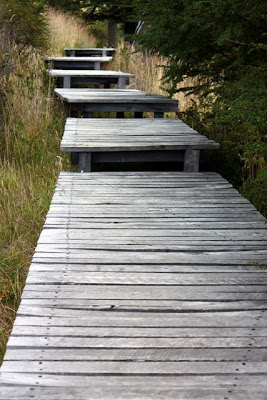 Walking platform in Torres del Paine National Park in Patagonia