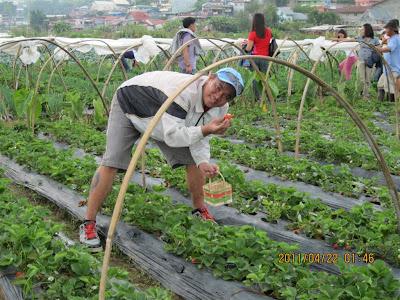 Atok Benguet