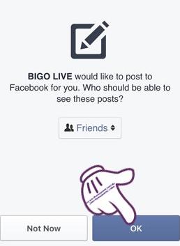 bgo live 1.PNG