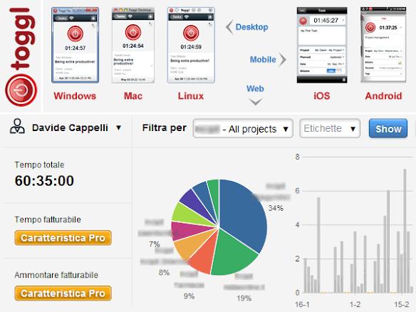 Infografica sintesi features di Toggl.com
