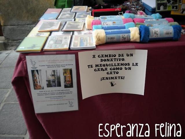 """Esperanza Felina en """"El Mercado de La Almendra"""" en Vitoria - Página 2 DSCN4272"""