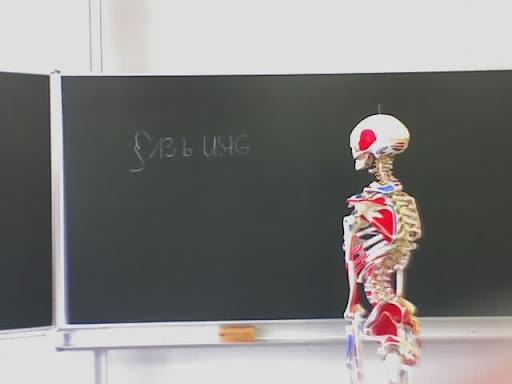 https://lh6.googleusercontent.com/_Ur8W_-li2FQ/TWlhhI8cmhI/AAAAAAAAZWk/4quke6x9Mvg/Schule-Skelett-18-07-09_0911.jpg