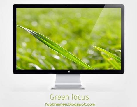 Green focus Wallpaper
