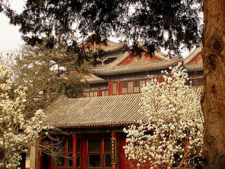 Древний Китай, весна