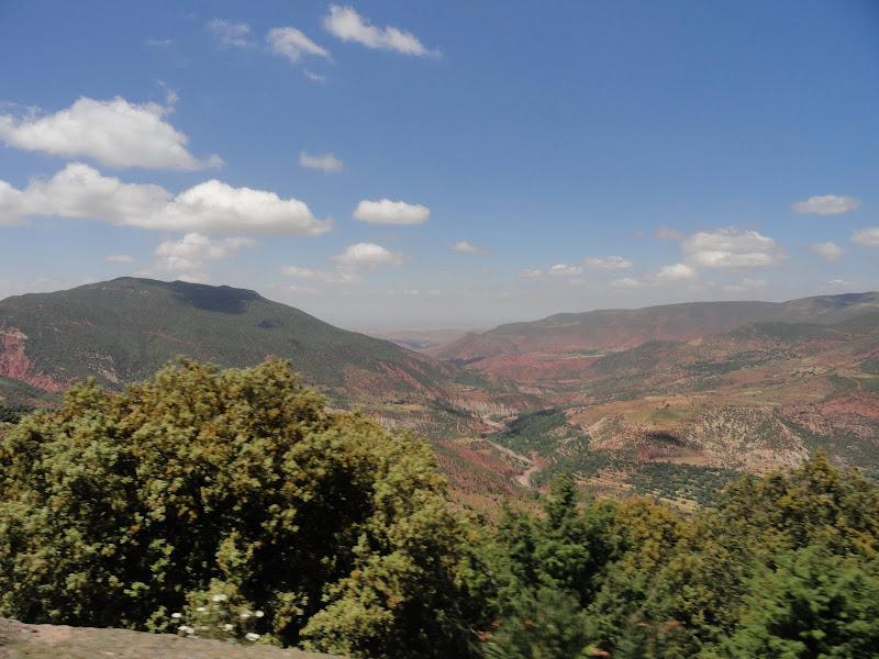 marrocos - Passeando por Marrocos... - Página 4 DSC07922