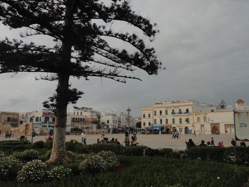 Passeando por Marrocos... - Página 5 DSC08753