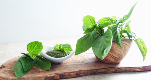 """Basil Pesto"" Recipe (low sodium)"