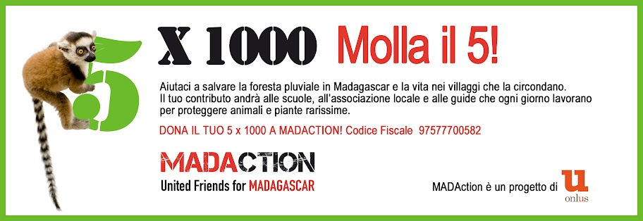 Lemur catta MADACTION