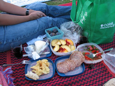 fun on the frugal - picnic