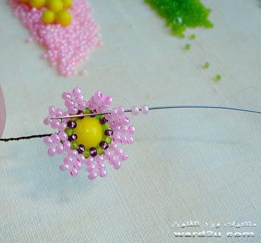 فازه وورود بالخرز شرح بالصور