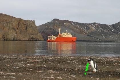 https://lh6.googleusercontent.com/_fw7iF68JR8k/TajY-u4_dkI/AAAAAAABqRw/l-PfocMn34I/vomiting_penguin.jpg