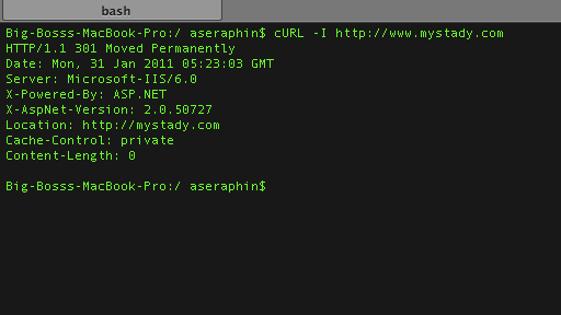 Screenshot: Bash Terminal Curl Example