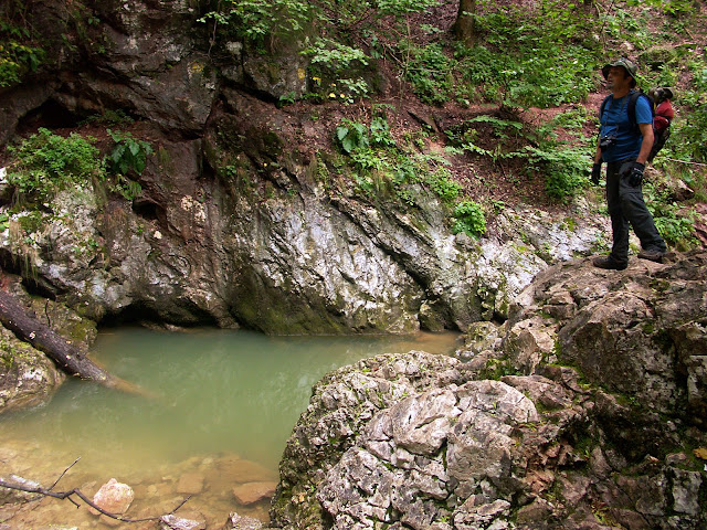 a sziklafal tövében áramlik ki a 900méterrel távolabb, a Csodavárban a felszín alá elbújó patak vize...