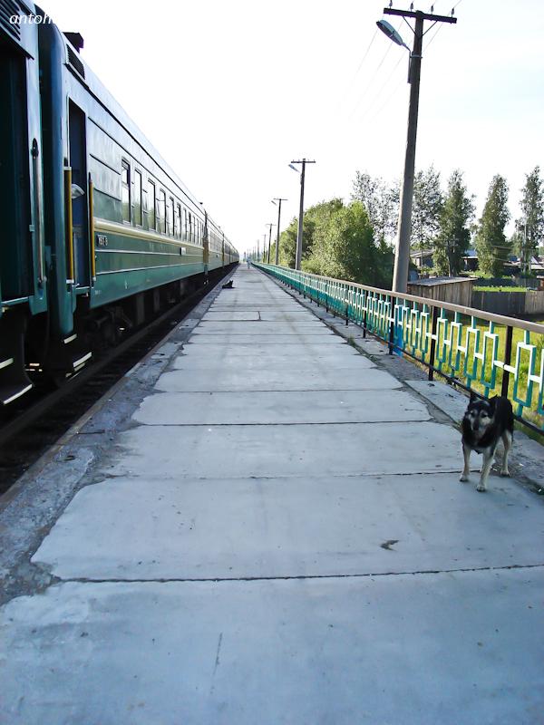 В момент прибытия и убытия поезда