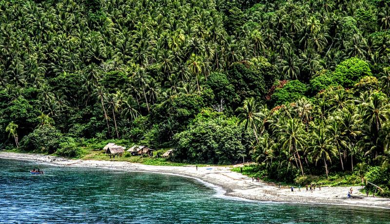 runraid free fr prince edward island
