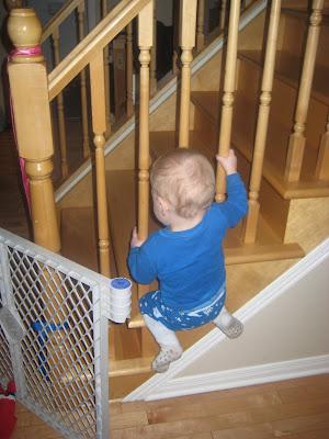 Rye climbing stairs