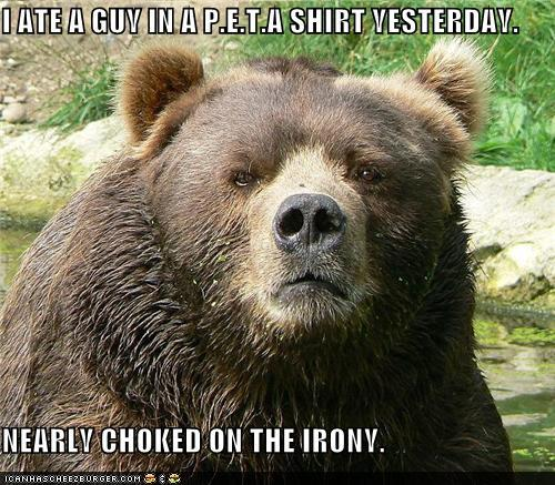 photo of a bear who just ate a peta guy