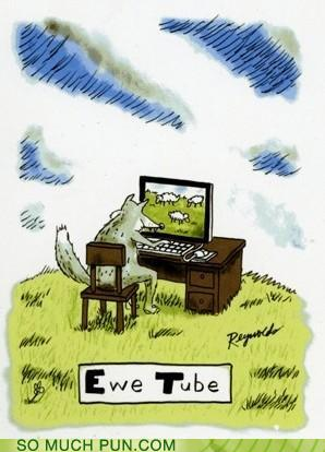 cartoon of a wolf watching a video of ewes...ewe tube