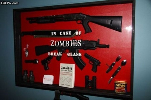 photo of a case full of guns and knives that says In case of zombies, break glass