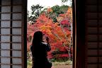 喜多院の紅葉へ