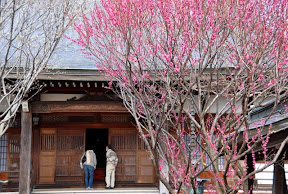 〆西光寺へ