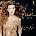 Nawal Al Zoghbi-Toul Omry