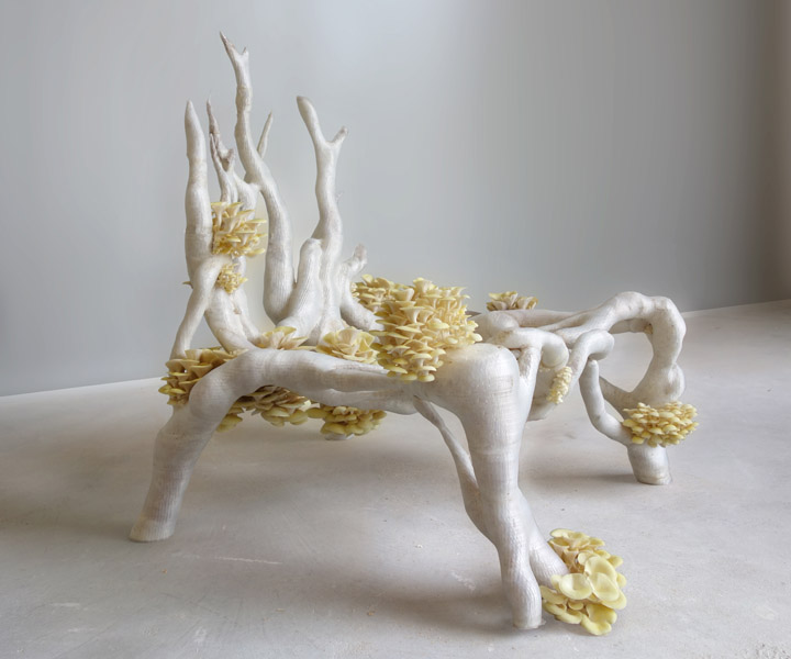 An icon of biodesign for the design world, Erik Klarenbeek's Myceliumchair chair, built from 3D-printed living mycelium. Credit: Studio Klarenbeek & Dros.
