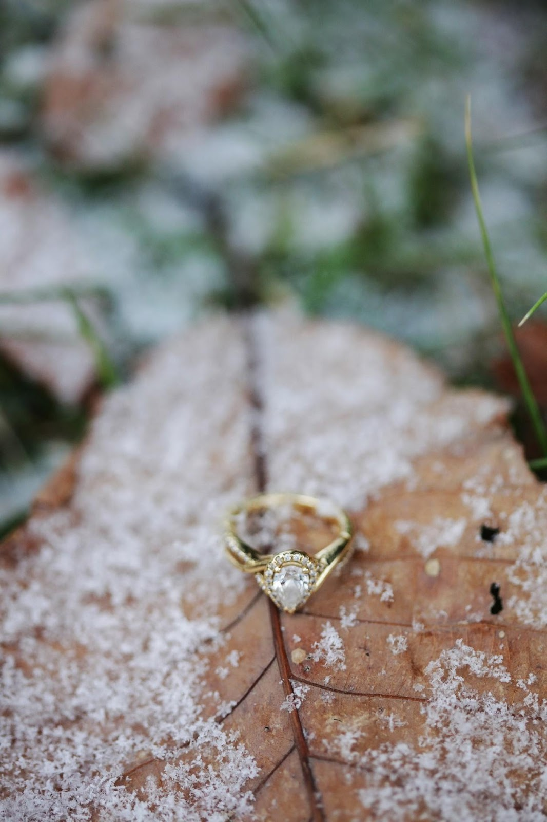 C:\Users\DSG - Shaine\Downloads\depth-of-field-engagement-ring-frost-776372.jpg