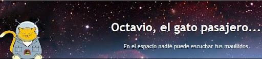 Octavio, el gato pasajero