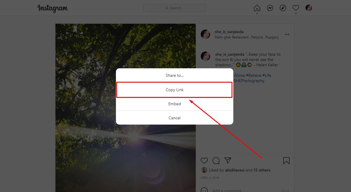 Embed Instagram Feed Method  2