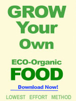 Top 10 Healthy Yet Cheap Organic Foods Groworganic