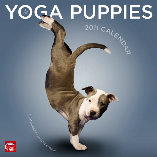 Closing Soon! Yoga Puppies Calendar 8/26!