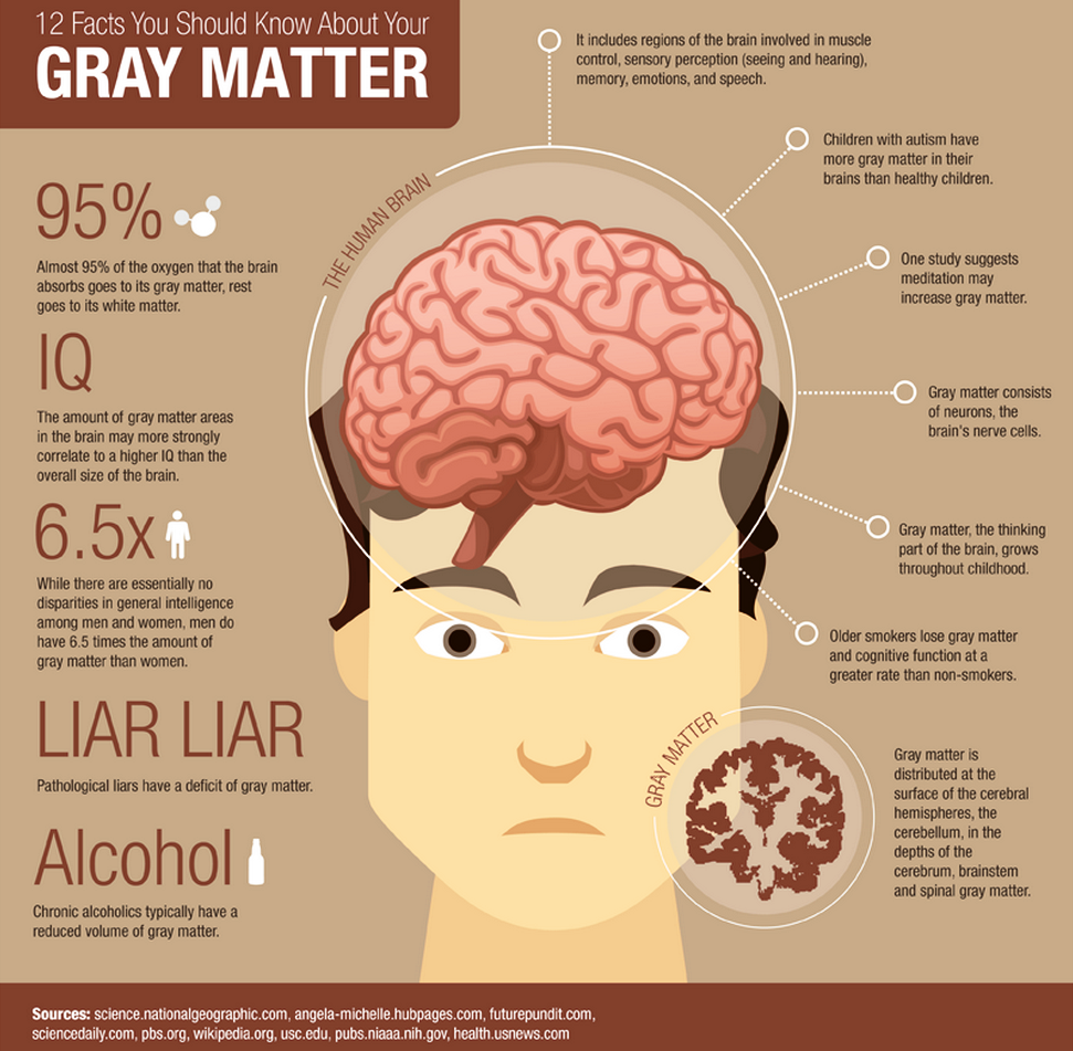 Image result for Grey matter facts