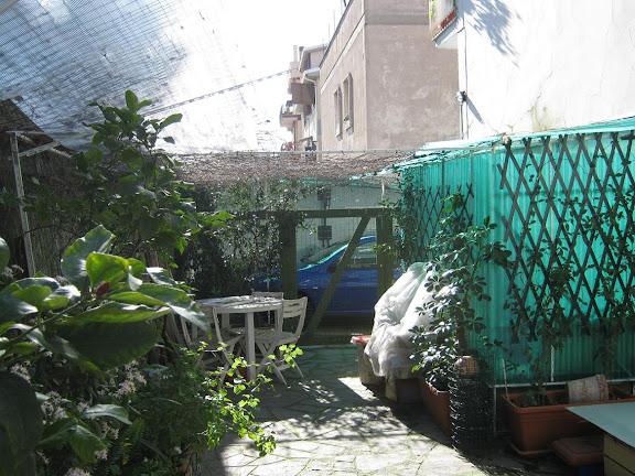 Nuova recinzione antifuga per il giardino miagolando - Recinti per giardino ...