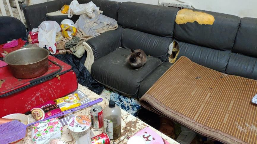一張含有 室內, 座位, 沙發, 散亂 的圖片  自動產生的描述