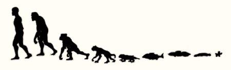 Kristietis un evolūcija