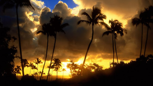 Kapa'a Sunrise, Kauai, Hawaii - Copy.jpg