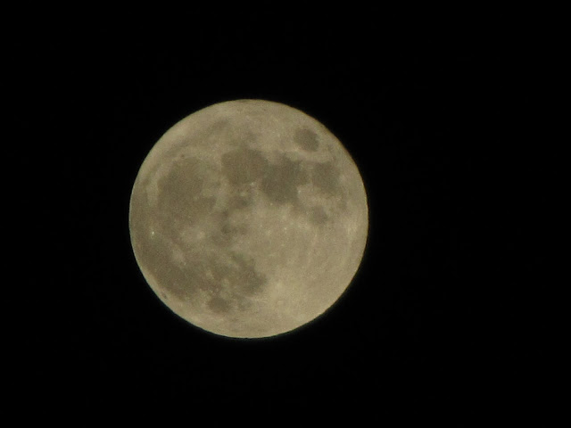 昨日的满月