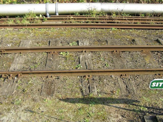 SKLR track