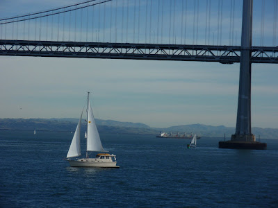 Sailing back to San Francisco after a wonderful afternoon