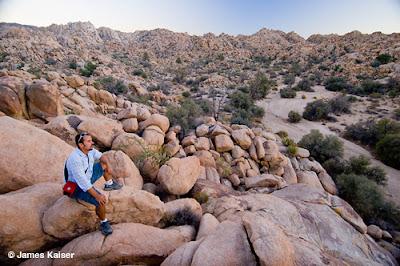 Joshua Tree - Wonderland of Rocks