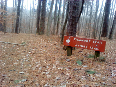 trail head of the Sycamore Trail at Umstead