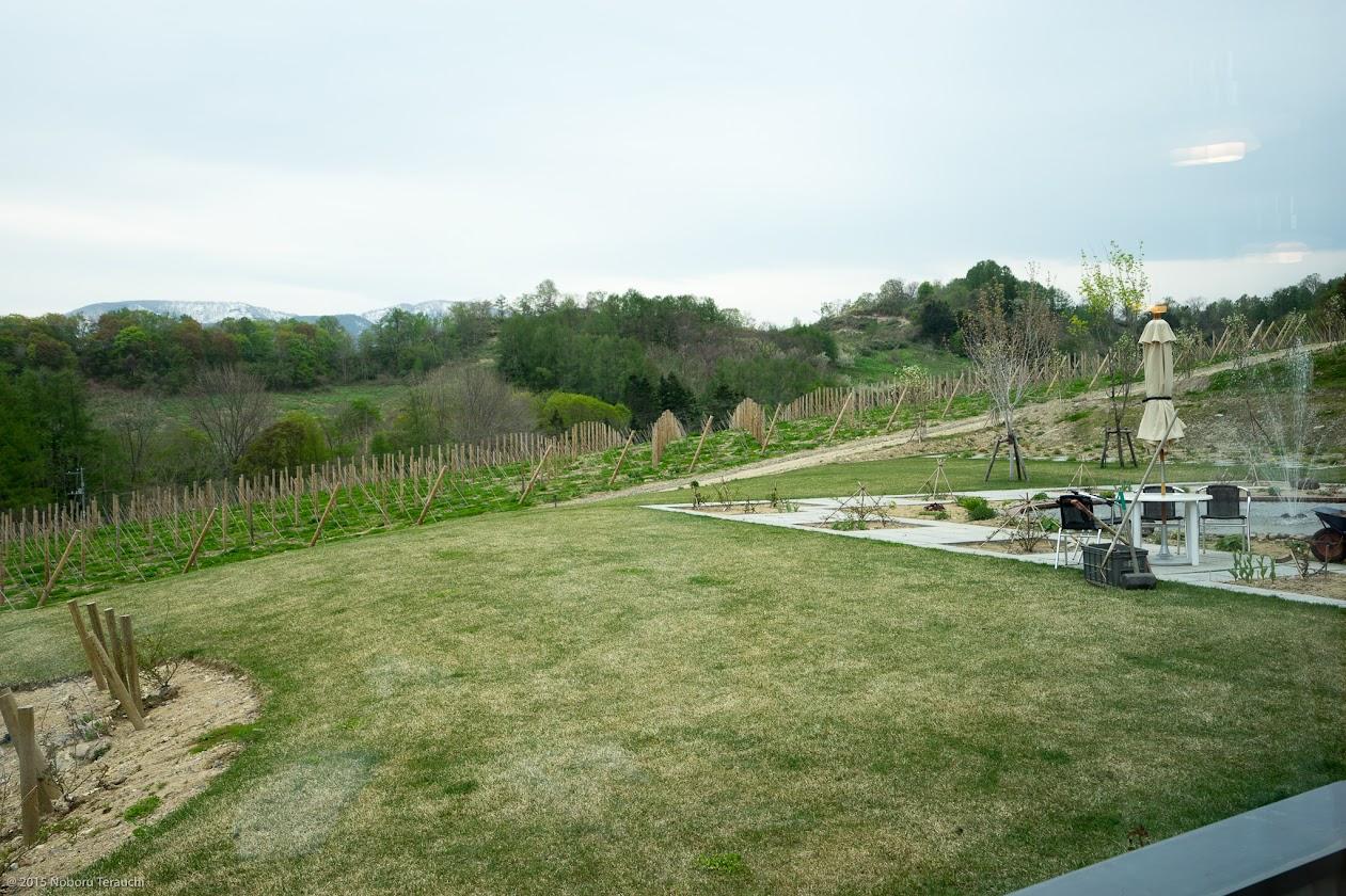 緑芽吹き、噴水が上がるガーデン