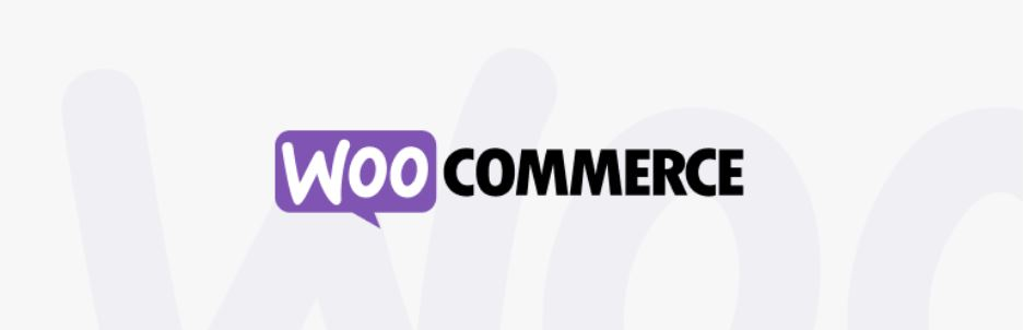 Best WordPress eCommerce Plugins And Themes